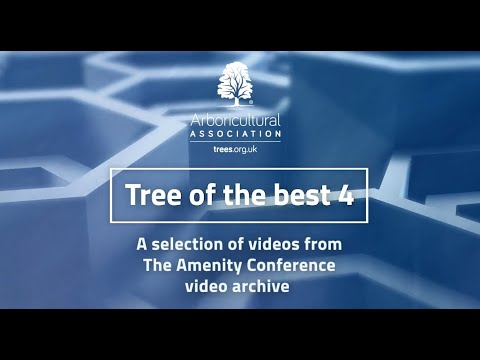 Tree of the Best 4 (from the Arboricultural Association Conference archives)
