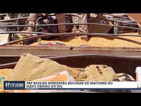 PRF realiza apreensão recorde de maconha no Mato Grosso do Sul