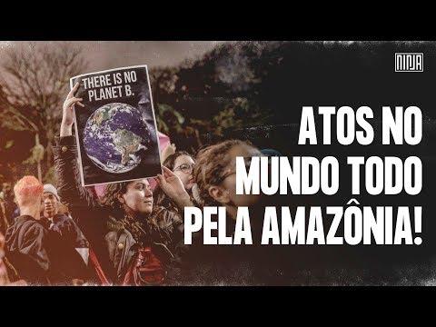 Protestos pela Amazônia mobilizam cidades pelo mundo!