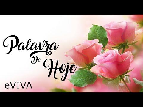 PALAVRA DE HOJE 29 DE MAIO 2020 eVIVA MENSAGEM MOTIVACIONAL PARA REFLEXÃO ISAÍAS 41 13 BOM DIA!