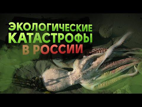 КРУПНЕЙШИЕ ЭКО-КАТАСТРОФЫ В РОССИИ