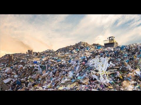 Top 5 plastic-free initiatives by UAE companies (International Plastic-Bag Free Day)