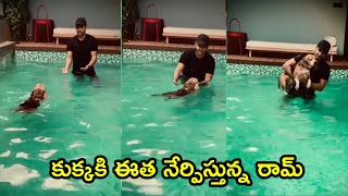 Ram Pothineni Playing With Dog In Swimming Pool | Ram Pothineni House Inside View - RAJSHRITELUGU