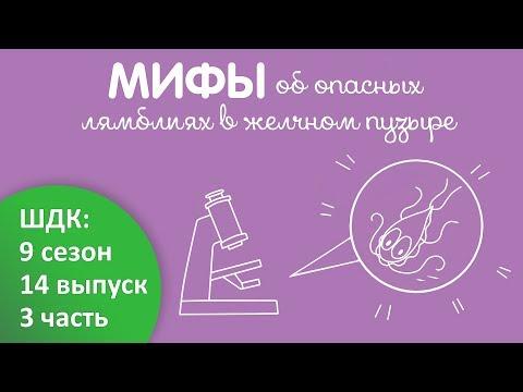 Мифы об опасных лямблиях в желчном пузыре - Доктор Комаровский