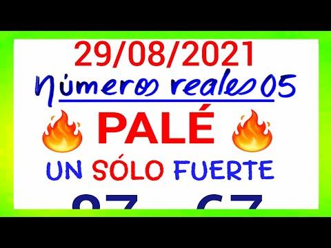 NÚMEROS PARA HOY 29/08/21 DE AGOSTO PARA TODAS LAS LOTERÍAS....!! Números reales 05 para hoy....!!
