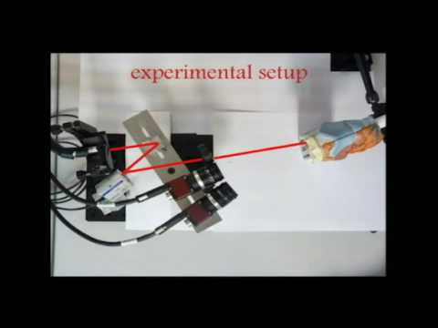 Hybrid motion/force control of multi-backbone continuum robots (1)