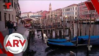 Marea extrema parece secar los icónicos canales de Venecia   Al Rojo Vivo   Telemundo