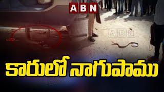 కారులో నాగుపాము  | Suddenly Snake Found In Running Car | ABN Telugu - ABNTELUGUTV