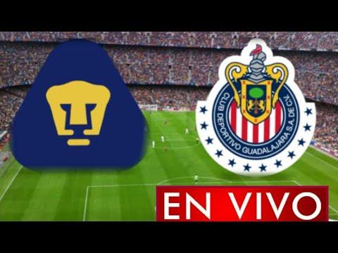 Donde ver Pumas vs. Chivas en vivo, por la Jornada 8, Liga MX 2021