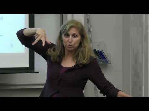 RI Seminar: Naomi Ehrich Leonard : Bio-inspired dynamics for multi-agent decision-making