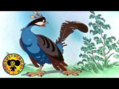 Кадр из мультфильма «Это что за птица?»