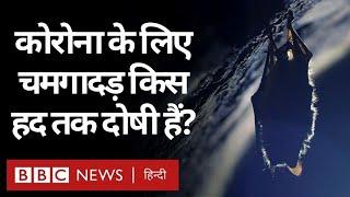 Coronavirus India Update : Corona Virus ????? ?? ??? ????????? ?? ??? ???? ????? ??? (BBC Hindi)