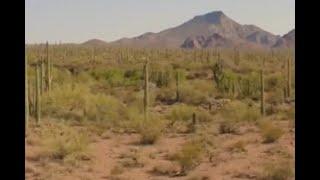 Nueva ola de calor amenaza a migrantes que cruzan el desierto de EE.UU.
