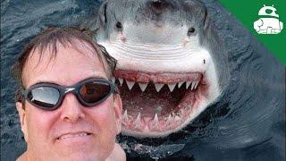 Death by Selfie?