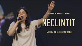Neclintit - Harvest Arad