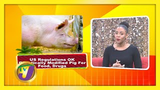 Trending Topics: TVJ Smile Jamaica - December 19 2020