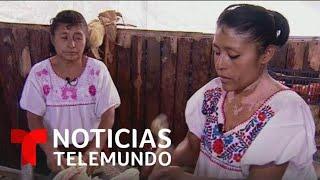 Dos mujeres en México preservan el grano del maíz con deliciosos platillos