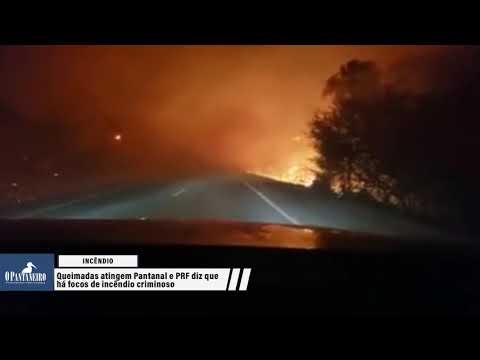 Queimadas atingem Pantanal e PRF diz que há focos de incêndio criminoso