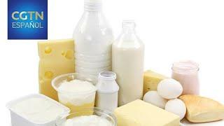 China abre su mercado a lácteos brasileños con una demanda estimativa de 4,5 millones de dólares