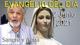 Evangelio Del Dia de Hoy - Miercoles 2 Junio 2021- Sangre y Agua