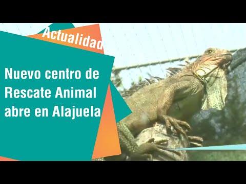 Nuevo Centro de Rescate Animal abre sus puertas en Alajuela | Actualidad
