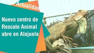 Nuevo Centro de Rescate Animal abre sus puertas en Alajuela   Actualidad
