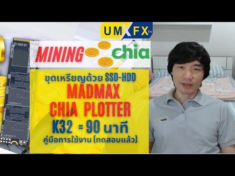 ขุดเหรียญ-Chia-วิธีใช้-MadMax-