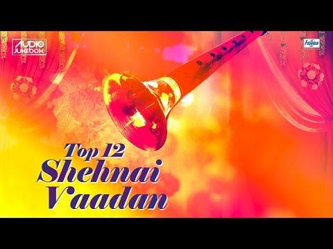 Download Youtube To Mp3 Top 12 Shehnai Vadan Jukebox