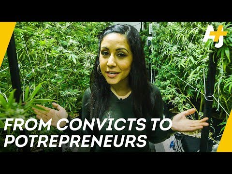 California Cannabis: War On Drugs Reparations | Direct From With Dena Takruri  - AJ+