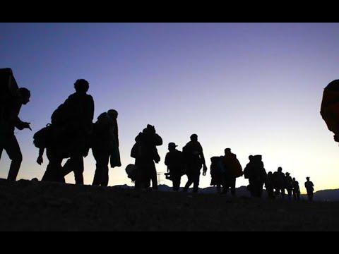 Flujo migratorio continúa en el país