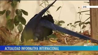 Noticias Telemedellín emisión 7:00 p.m. 20 de septiembre