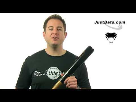 Viper Ultralight Birch Wood Youth Baseball Bat: VLLUL