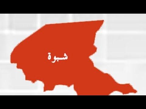 شاهد🔴|محافظة شبوة بيحان وحريب مارب اعلامي يصف مايحصل وكيف تسير الأمور |تحليل وراي٠‼️