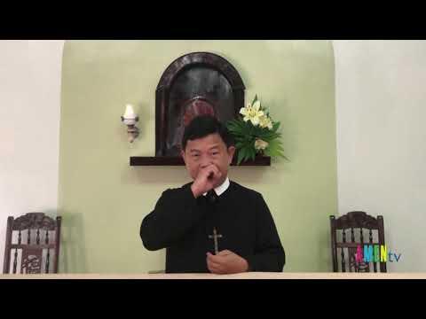 LHS Thứ Bảy sau CN XIV TN: ANH EM ĐỪNG SỢ HÃI - Linh mục Giuse Đinh Hữu Thoại , DCCT