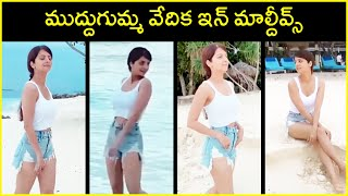 Actress Vedhika Enjoying Her Vacation in Maldives | Latest Videos of Vedhika | Rajshri Telugu - RAJSHRITELUGU