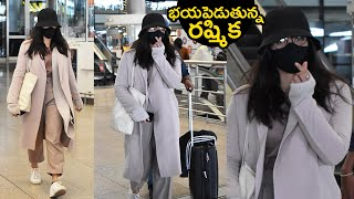 Tollywood Actress Rashmika Mandanna Airport Look | Celebrities Airport Videos | Tollywood - TFPC