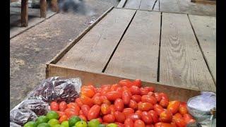 Presunto asaltante asesinado en Mercado La Palmita