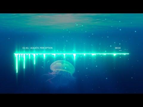Aquatic Perception (DJ AG Original)