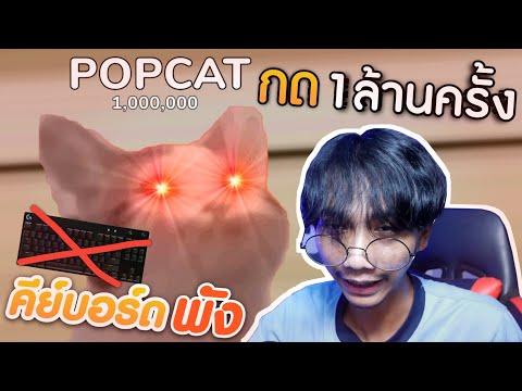 กด-POPCAT-1,000,000-ครั้ง-จนคี