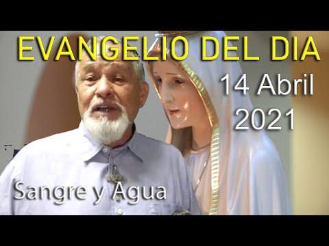 Evangelio Del Dia de Hoy - Miercoles 14 Abril 2021- Sangre y Agua