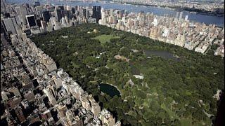 Covid-19 : New York va-t-elle organiser un concert géant en août