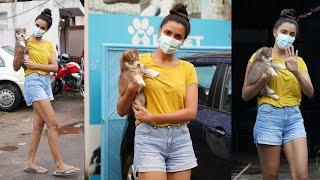 Nagarjuna Heroine Akshara Gowda Spotted At Pet Clinic | #AksharaGowda - TFPC