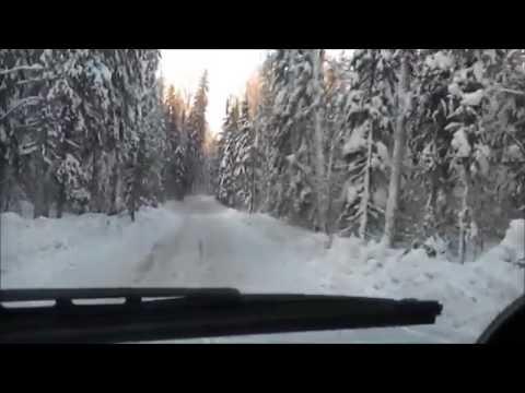Томская область - зимник!