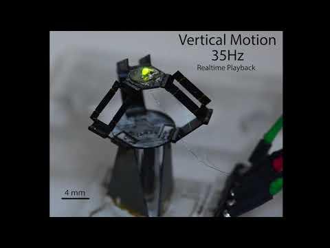 Harvard's milliDelta: A high-bandwidth, high-precision, millimeter-scale Delta robot