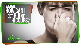 World's Most Asked Questions: How Can I Get Rid of the Hiccups?