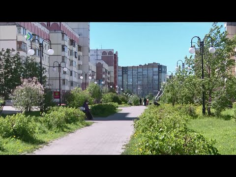 Жители сыктывкарской Орбиты пожаловались, что на Покровском бульваре некуда присесть