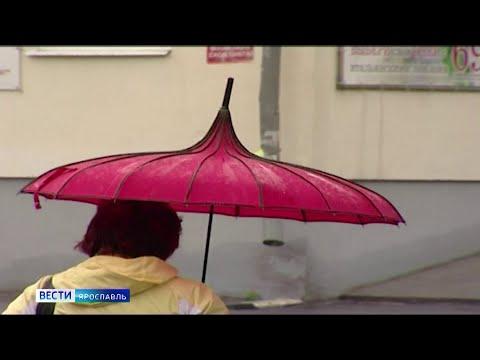 Экстренное предупреждение МЧС: в Ярославской области ожидаются ливни и грозы