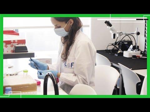 iLoF - Intelligent Lab on Fiber | Disrupt 2020