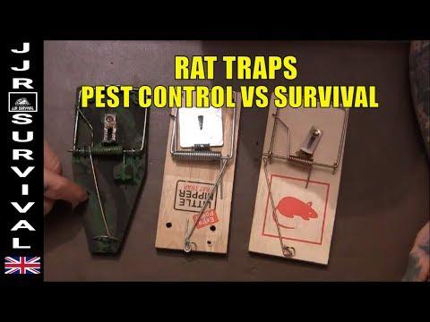 Survival Rat Traps vs Legal Pest Control Rat Traps
