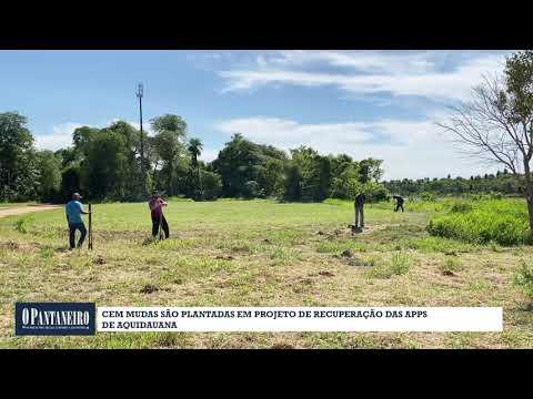Cem mudas são plantadas em projeto de recuperação das APPs de Aquidauana